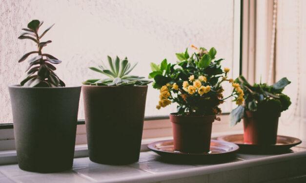 Ablakpárkány – egy nem lényegtelen apróság, ami megvéd a beázás ellen