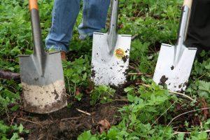 A kerttervezés rendkívül komplex folyamat lesz.