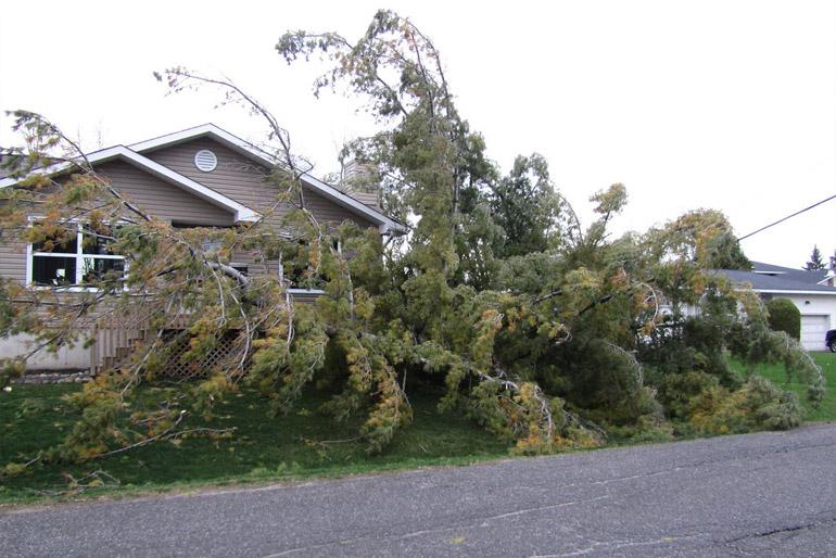 A szélvihar minden évben szedi áldozatait lerepülő cserepek, megbontott tető, betört ablakok formájában.