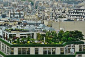 Zöldtető nagyvárosban.