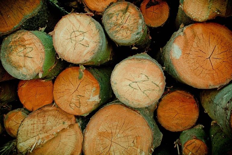 Fészer - A tűzifa tárolásának viszonylag nagy a helyigénye, ezért a legtöbbször ez a tároló a kertbe fog kerülni.