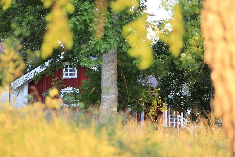 Otthonos, kényelmes, ötletes – a skandináv ház